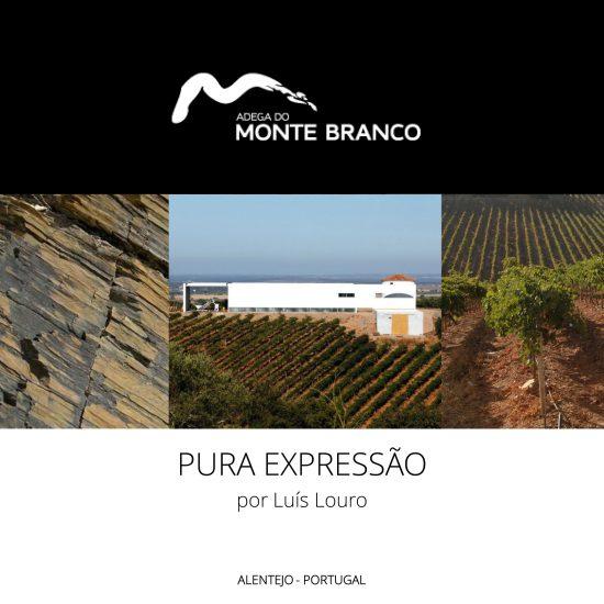 Monte-Branco--Apresentação-Port--v11-1