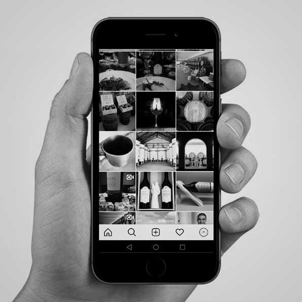 Social Media: gerimos comunidades com senso & sensibilidade